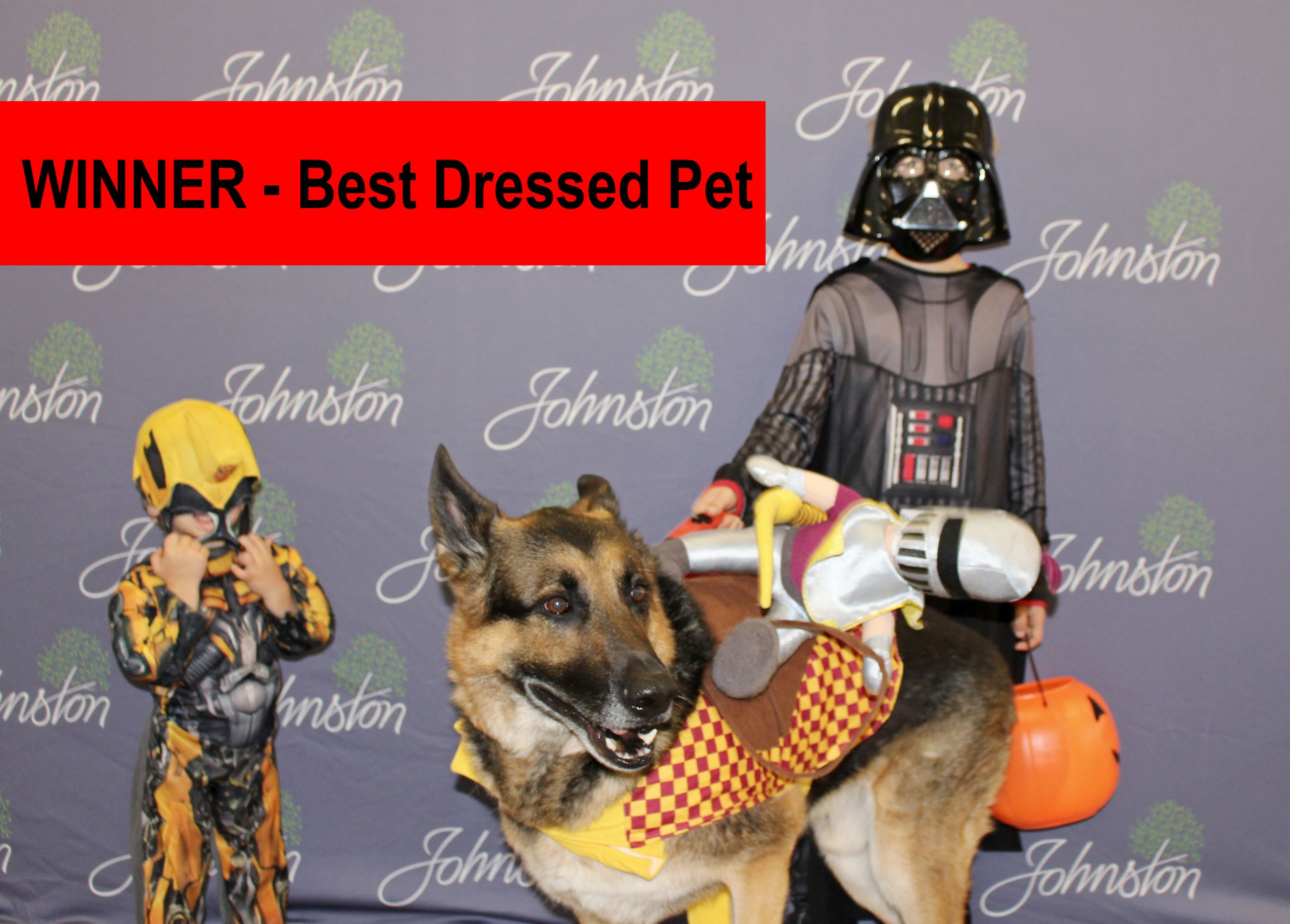 Winner_Best Dressed Pet