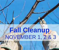 Fall Cleanup (website)