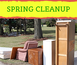 SPRING CLEANUP_small