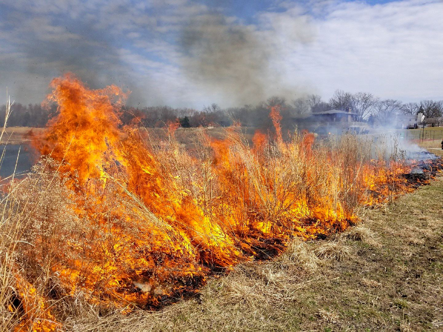 Prescribed Burn_Terra Park