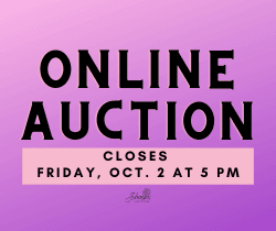 Online Auction_250x210