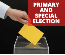 Primary and Special Election_250x210